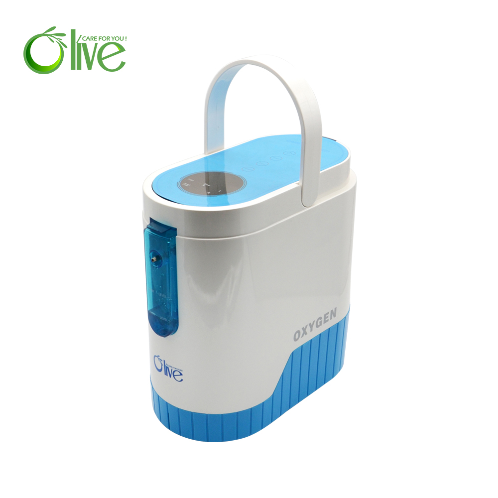 Portable rechargeable oxygen concentrator with battery