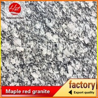 best sale cheap price sea spray white granite G4418