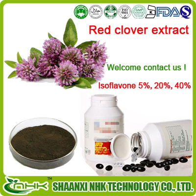 Red Clover Extract 2.5% 8% 20% 40% Total Isoflavones HPLC 977150-97-2