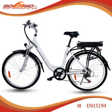 Sobowo S3 36v 250W rear rack battery adult balance bike- Sam