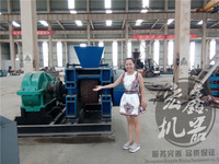 Dry Powder Briquette Machine Widely Used For Synthetic Gypsum,Slurry, Coal Powder