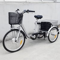 Retro200w 250w 350w 3 Wheel Electric