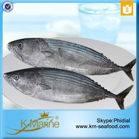 2015 Newly Fresh Seafood Lower Price Frozen Sarda Sea Fish