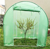 Outdoor Roof Qube Grow Tent Kit Green house