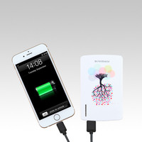 New Rohs Portable Power Bank Smart