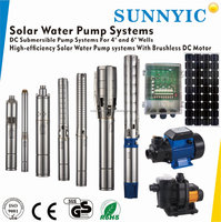12v dc motor solar pump for private farm irrigation With MPPT controller