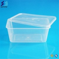 Injection Plastic Fast Food Container