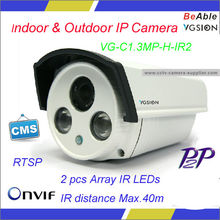 Special Offer 1.3 MP indoor & Outdoor IP Camera with Array IR LEDs/Motion Detect