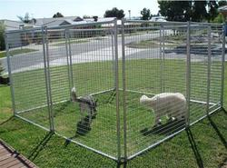 Anping Factory Wholesale Cheap Large Dog Kennels / Dog Fence Panel