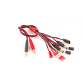 Multi Functional Charge Leads for RC accessory