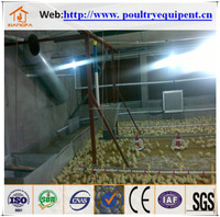 chicken house design for chicken cage for hot sale
