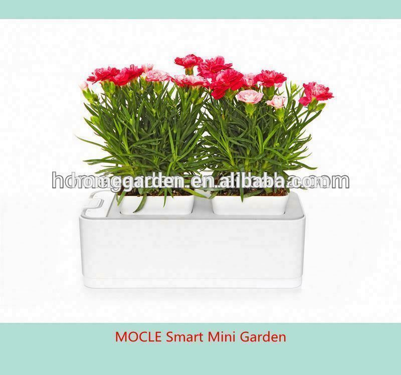 Smart Mini Garden distributors wanted in Canada