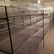 H type Hot-galvanized Material and Rabbit Use breeding rabbit cage rabbit farming cage