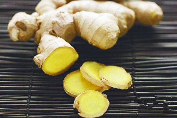 Competitive price wholesale fresh young ginger
