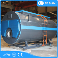 Gold and professional supplier selling chimney design for oil gas steam boiler