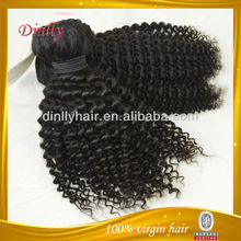 Wholesale kinky curly virgin remy malaysian hair weave/hair weft