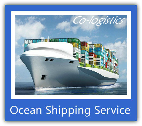 professional cargo forwarder sea freight China to Kawasaki------Sophie