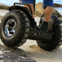 Off Road two wheeled pedal electric mopeds for sale with big tires