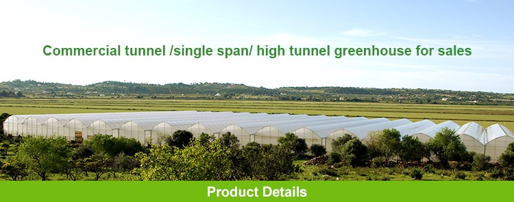 Wholesale eco-friendly irrigation indoor hydroponic grow systems