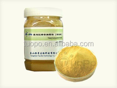 high quality yeast extract powder for food industry use