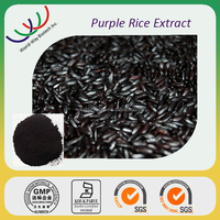 HOT SELL! Kosher FDA cGMP HACCP certified 25% anthocyanin bulk black rice extract