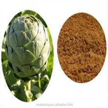 Export best-selling products Artichoke Extract