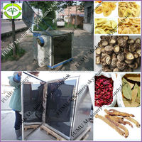new style stainless steel fruit drying machine