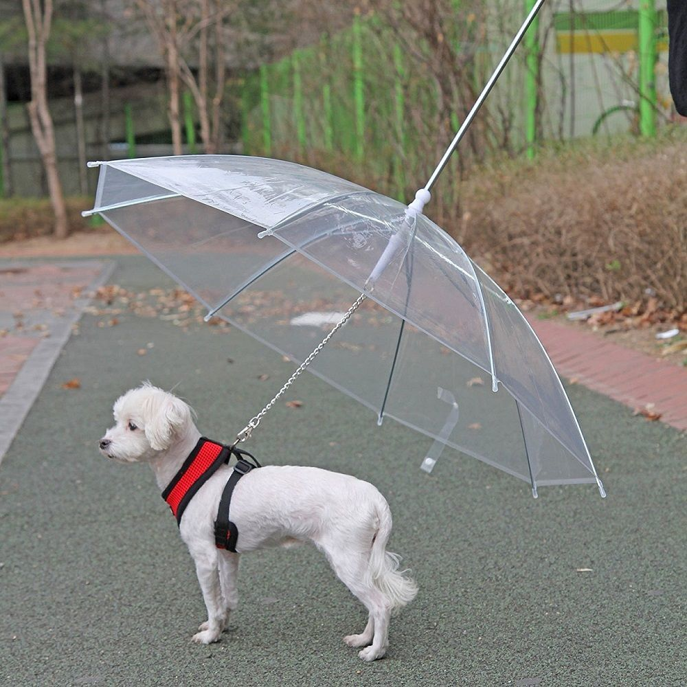Pet-Umbrella-With-Leash-2.jpg