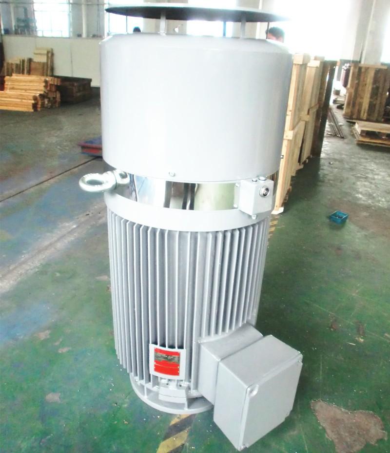 Deep Well Turbine Pump Three Phase Vertical Hollow Shaft