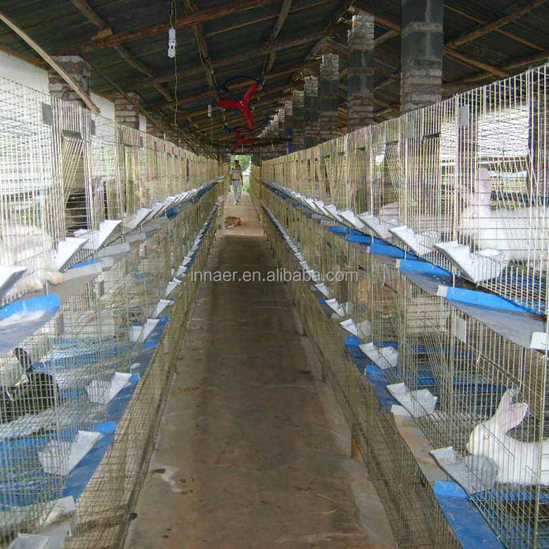 Supply for Practical and Durable Rabbit Cage(ISO9001) at Low Price