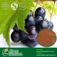 plant extract in stock,Natural Grape Seed Extract 95% OPC