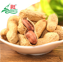 Chinese high quality good price garlic flavor roasted peanuts in shell