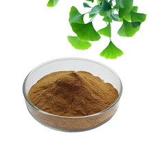 100% natural chinese herb health care supplement ginkgo biloba extract organic powder