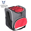 New Design Custom Logo Wholesale Mini 18L 12v Camping Electric Insulated Car Cooler Bag