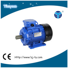 Y2 Three phase oil seal electric motor