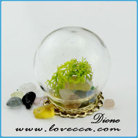 Cheap top quality charms e-co friendly plant geometric terrarium gold jewelry