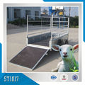 Cargo Trailer For Live Sheep