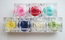 decorate preserved rose wedding flowers