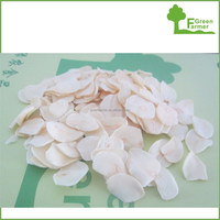 China best quality best price garlic flake