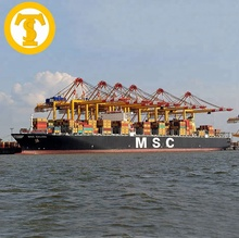 Professional sea <strong>freight</strong> shipping agent logistics company from China to Europe