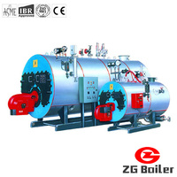 WNS biogas hot water boiler gas water heater boiler