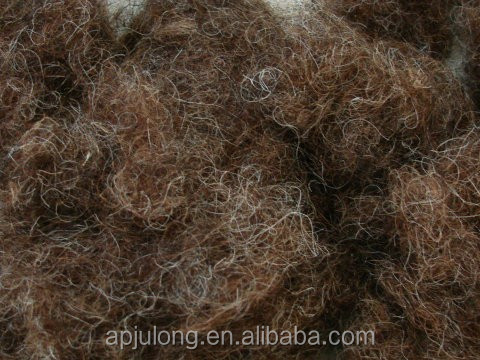 alibaba sale curled horse hair for padding