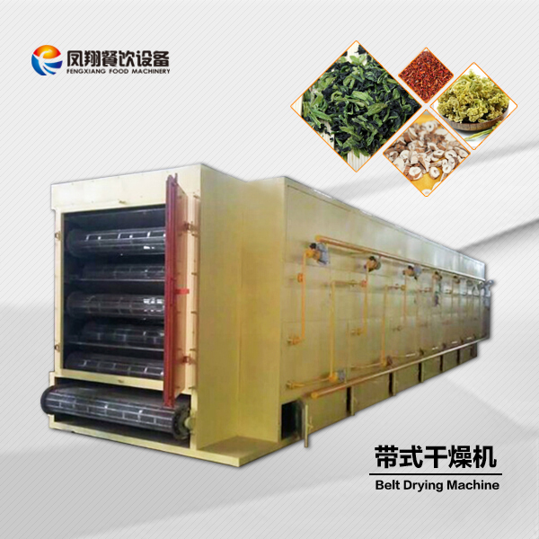 DW5-2-8 fruit hot air mesh belt dryer / food dehydrator mesh / drying machine for fruits , vegetables and meat