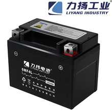 Two Wheel 125cc/ Seat Adult Electric Motorcycle Battery