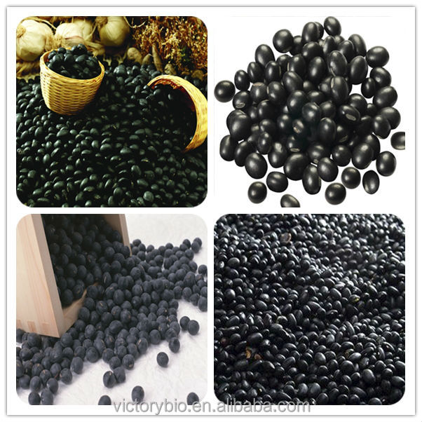 100% pure bean /extract Natural Black Bean Hull Extract
