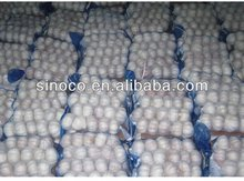 china garlic price 2013