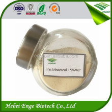 Paclobutrazol 15 wp,Paclobutrazol 10 wp,paclobutrazol powder,Top quality mango growth regulators.