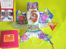China Traditional Kite