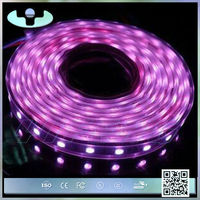 2014 New design high quality 5050 smd rgb led strip ws2811