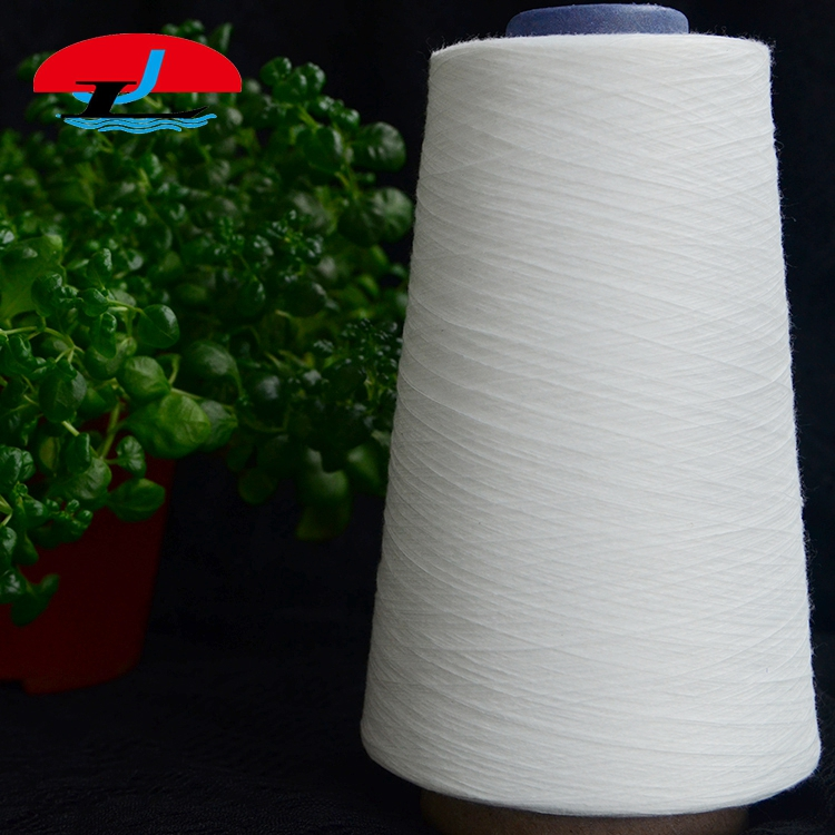 Factory Wholesale Eco 100% Polyester Knitting Raw Yarn
